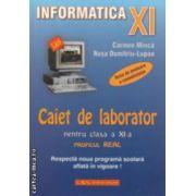 Informatica - Caiet de laborator clasa a XI - a : PROFILUL REAL ( editura :L & S Info - mat , autori : Carmen Minca , Nusa Dumitriu - Lupan ISBN 978-973-7658-19-7 )