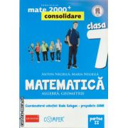 Matematica 2000 consolidare : Algebra , Geometrie : clasa a VII - a , Partea II ( editura : Paralela 45 , coord . Radu Gologan ISBN 978-973-47-1811-5 )