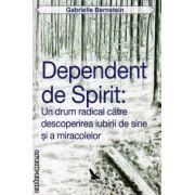 Dependent de spirit - un drum radical catre descoperirea iubirii de sine si a miracolelor ( editura : For You , autor : Gabrielle Bernstein , ISBN 978-606-639-053-8 )