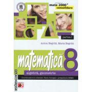 Matematica clasa a 8 a algebra si geometrie partea I Consolidare ( Editura : Paralela 45 , Autor : Anton Negrila , Maria Negrila ISBN 978-973-47-1949-5 )