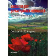 Gazele de sist si fracturarea hidraulica Intre mit si realitate ( Editura: Integral, Autor: Constantin Cranganu ISBN 978-973-8209-22-0 )