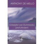 Gaseste-l pe Dumnezeu pretutindeni ( Editura: Dao Psi, Autor: Anthony de Mello ISBN 978-606-8180-07-6 )