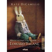 Miraculoasa calatorie a lui Edward Tulane ( editura: Arthur, autor: Kate DiCamillo, ISBN 978-606-8044-64-4 )