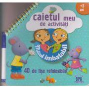Micul imbatabil, Caietul meu de activitati + 3 ani, 40 de fise refolosibile ( Editura: Didactica Publishing House ISBN 978-606-683-178-9 )