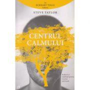 Centrul calmului ( Editura: Curtea Veche, Autor: Steve Taylor ISBN 978-606-588-923-1 )