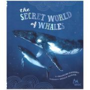 The Secret World of Whales ( Autor: Charles Siebert ISBN 9780811876414 )