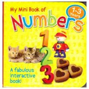 My Mini Book of Numbers ( Editura Outlet - carte limba engleza, ISBN 5021947995315 )
