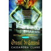 Orasul de Cenusa (Instrumente Mortale, cartea a 2-a) ( Editura: Leda, Autor: Cassandra Clare, ISBN 978-606-93685-7-2 )