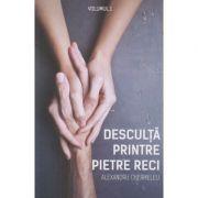 Desculta printre pietre reci vol 1 (Editura Stylished, Autor: Alexandru Chermeleu ISBN: 978-606-94540-7-7)