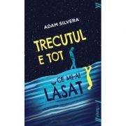 Trecutul e tot ce mi-ai lasat ( Editura: Art Grup Editorial, Autor: Adam Silvera ISBN 978-606-8811-55-0 )