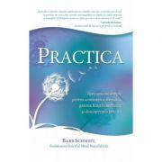 Practica. Instrumente simple pentru combaterea stresului, gasirea linistii interioare si descoperirea fericirii (Editura: Adevar Divin, Autor: Barb Schmidt ISBN 978-606-8420-93-6)