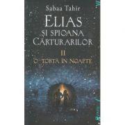 Elias si spioana Carturarilor volumul 2 O torta in noapte (Editura: ART GRUP EDITORIAL ISBN 978-606-8811-68-0)