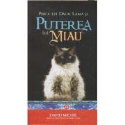 Pisica lui Dalai Lama si Puterea lui miau(Editura: Atman, Autor: David Michie ISBN 978-606-8758-43-5)