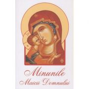 Minunile Maicii Domnului(Editura: Sophia ISBN 978-973-136-706-4)