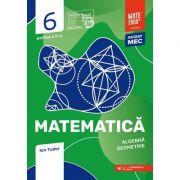 Matematica. Aritmetica, algebra, geometrie. Caiet de lucru. Clasa a VI-a. Initiere. Partea a II-a (Editura: Paralela 45, Autor: Ion Tudor ISBN 9789734733040)