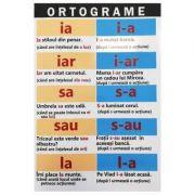 Ortograme (Editura: Carta Atlas ISBN 9786068911380)