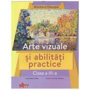 Arte vizuale si abilitati practice manual pentru clasa a 3 a (Editura: Akademos, Autor(i): Ana-Maria Stan, Ioana-Lavinia Streinu ISBN 9786060000532)