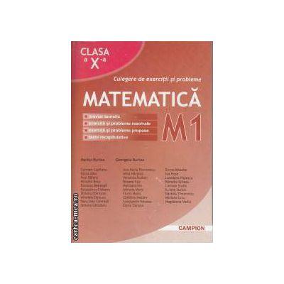 Culegere de exercitii si probleme Matematica M1 clasa 10 a