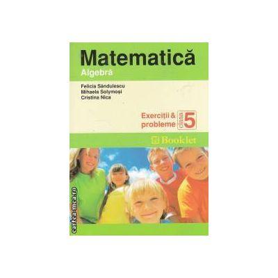 Matematica Algebra Exercitii si probleme clasa a 5-a