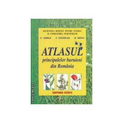 Atlasul principalelor buruieni din Romania ( editura : Ceres , autori : C . Chirila , V . Ciocarlan , M . Berca ISBN 978-973-40-0949-7 )