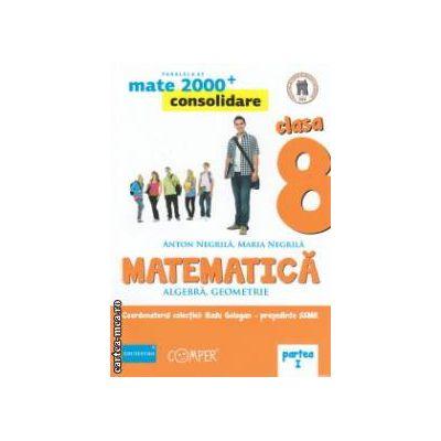 Matematica 2000 consolidare : Algebra , Geometrie : clasa a VIII - a , Partea I ( editura : Paralela 45 , coord . Radu Gologan ISBN 978-973-47-1717-0 )