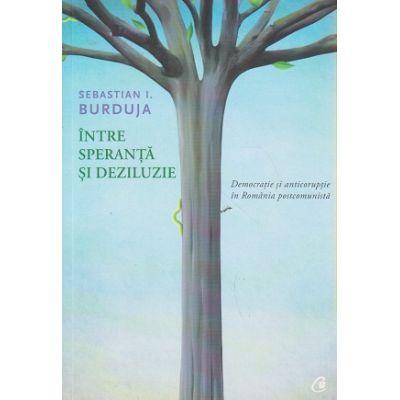 Intre speranta si deziluzie ( Editura: Curtea Veche, Autor: Sebastian I. Burduja ISBN 9786065889040 )