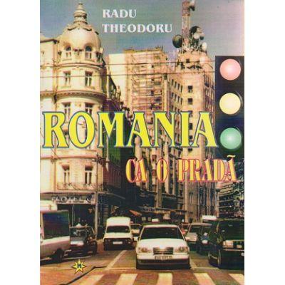 Romania ca o prada ( Editura: Miracol, Autor: Radu Theodoru ISBN 973-9315-53-4 )