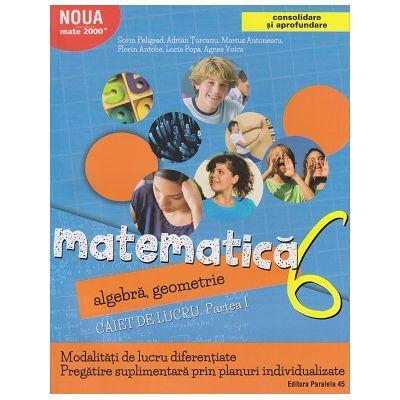Consolidare si aprofundare Matematica, algebra, geometrie Caiet de lucru. Partea I clasa a 6 a 2017 ( Editura: Paralela 45, Autor: Sorin Peligrad, Florin Antohe ISBN 978-973-47-2603-5 )