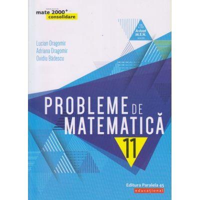 Probleme de matematica pentru clasa a XI-a: consolidare (Editura: Paralela 45, Autori: Lucian Dragomir, Adriana Dragomir, Ovidiu Badescu ISBN 9789734727995)
