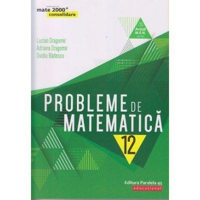 Probleme de matematica pentru clasa a XII-a: consolidare (Editura: Paralela 45, Autori: Lucian Dragomir, Adriana Dragomir, Ovidiu Badescu ISBN 9789734730407)