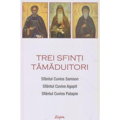 Trei sfinti Tamaduitori(Editura: Sophia, ISBN 978-973-136-721-7)